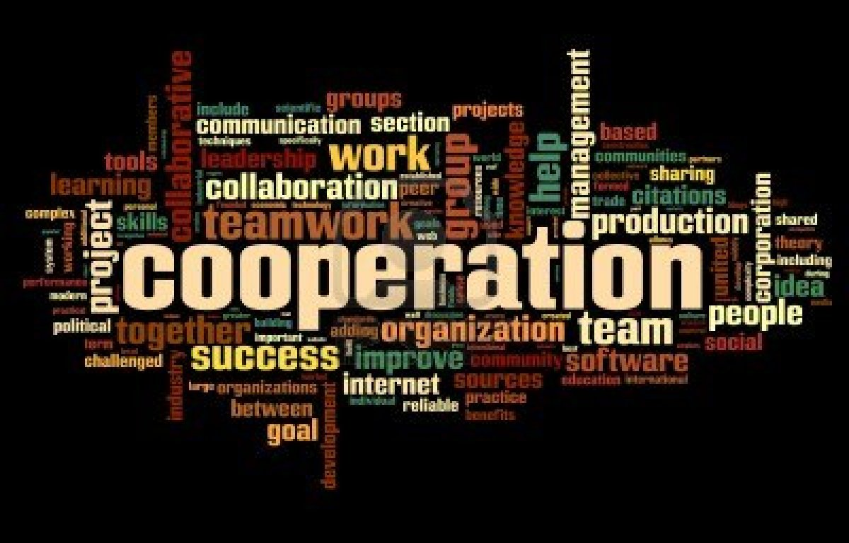 The secrets of cooperation