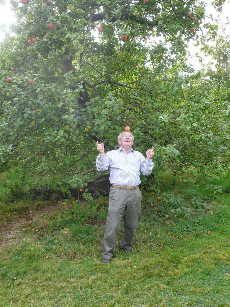 Again under Newton's apple tree