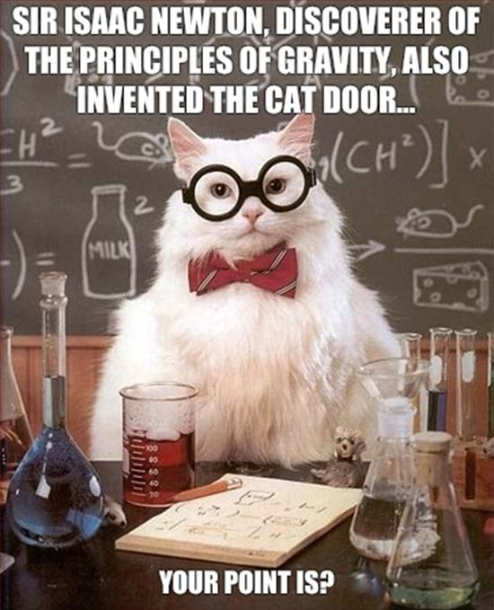 12. Newton and the cat flap